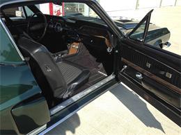 1968 Shelby GT350 Hertz (CC-1006900) for sale in Houston, Texas