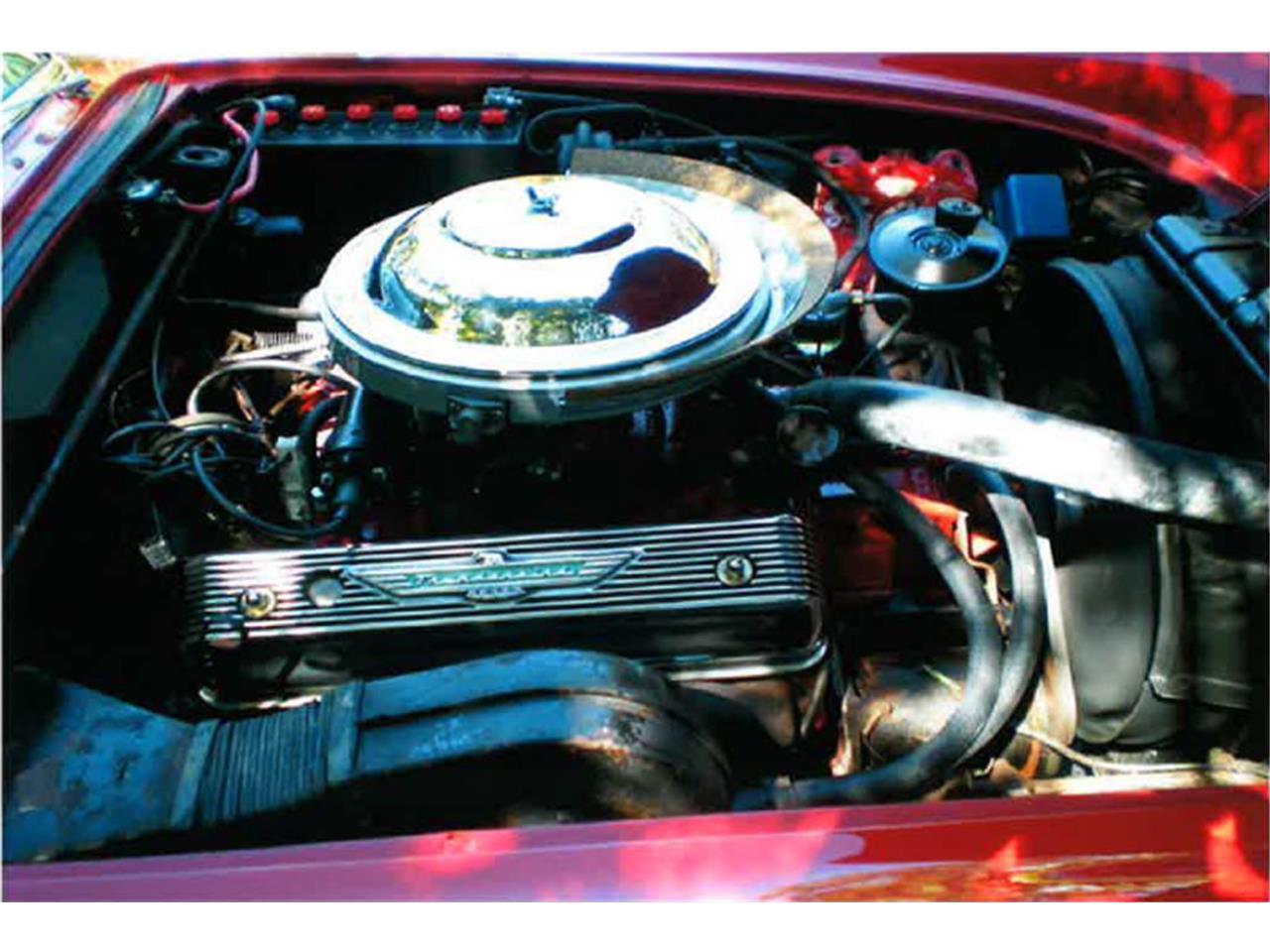 1955 Ford Thunderbird (CC-1008728) for sale in Miami, Florida