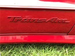 1997 Pontiac Firebird Trans Am (CC-1012479) for sale in Bridgeport, Pennsylvania
