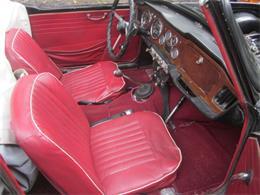 1964 Triumph TR4 (CC-1023903) for sale in Stratford, Connecticut