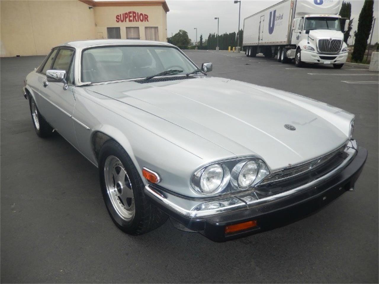 1982 Jaguar XJS for Sale   ClassicCars.com   CC-1025261
