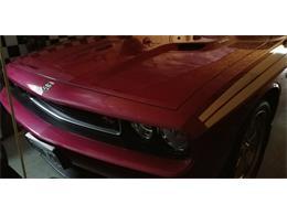 2010 Dodge Challenger R/T (CC-1057216) for sale in Sudbury, Ontario