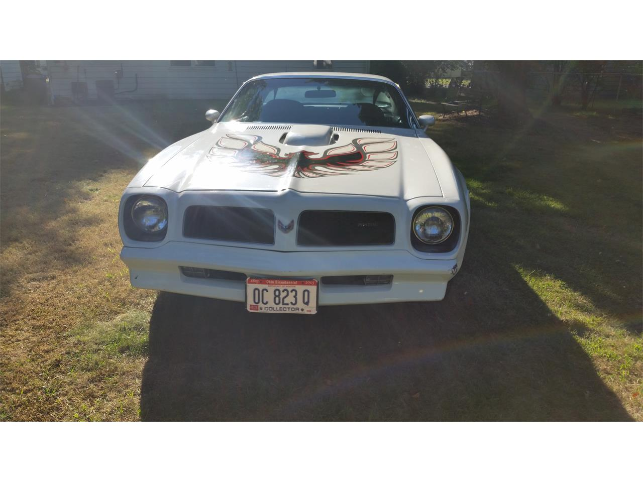 1976 Pontiac Firebird Trans Am (CC-1067841) for sale in Painesville , Ohio
