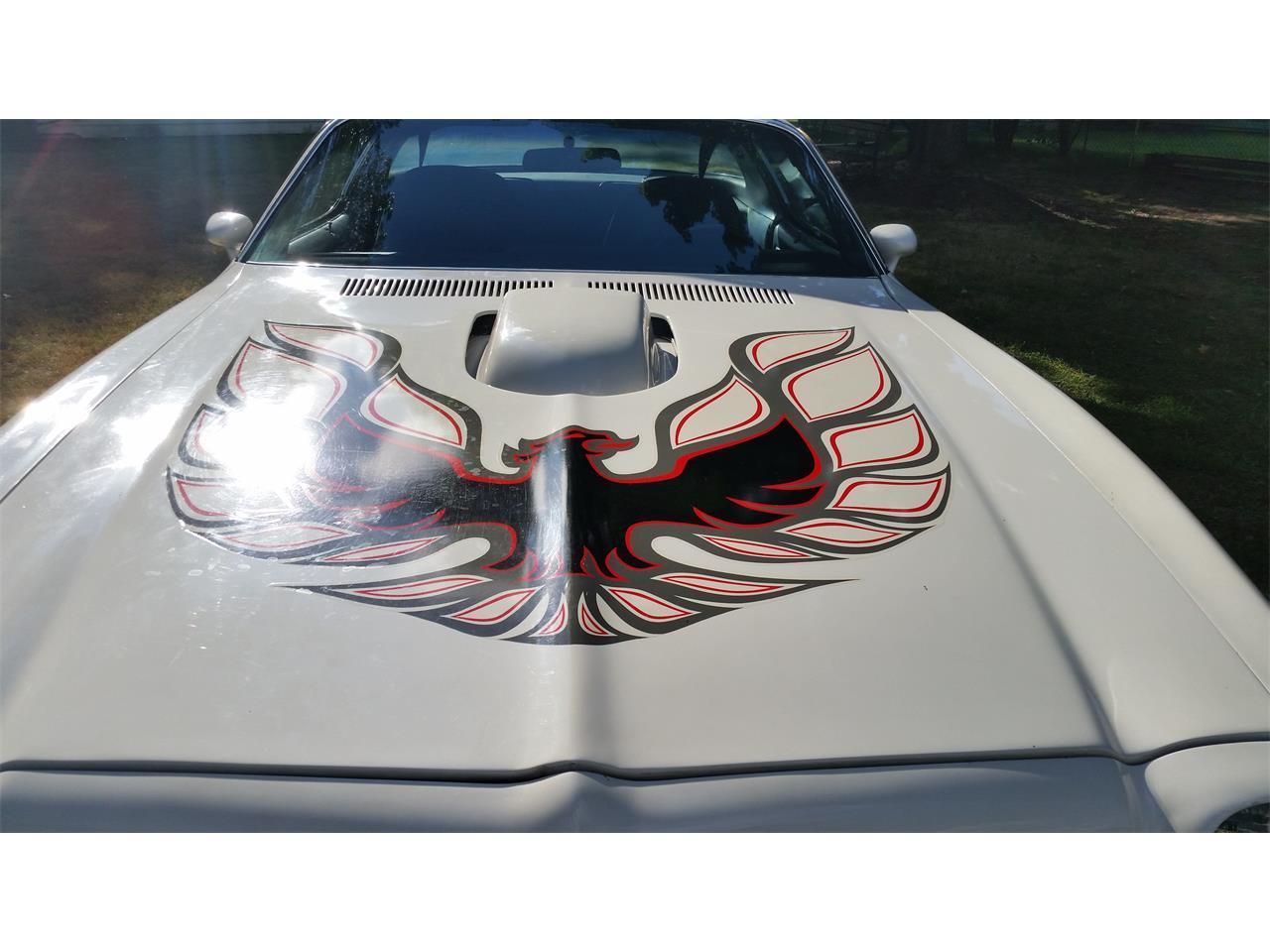 1976 Pontiac Firebird Trans Am (CC-1067841) for sale in Painesville , Ohio