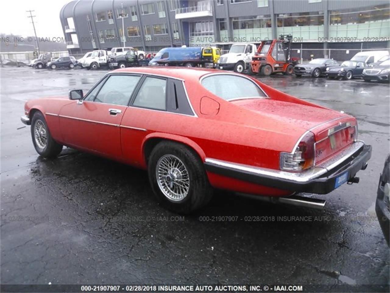 1985 Jaguar XJS for Sale | ClassicCars.com | CC-1073987