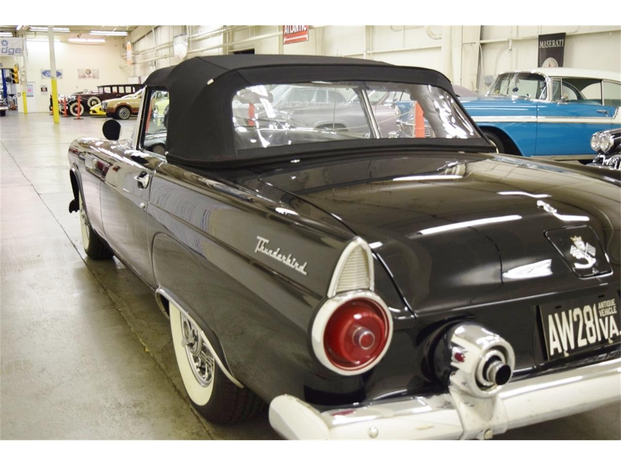 1955 Ford Thunderbird (CC-1083478) for sale in Fredericksburg, Virginia