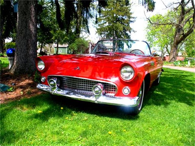 1955 Ford Thunderbird (CC-1099061) for sale in Cabot, Pennsylvania