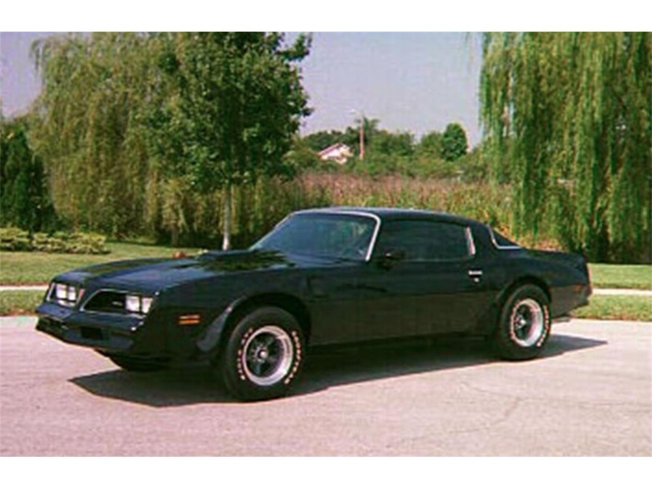 1977 Pontiac Firebird Trans Am (CC-1101213) for sale in Valrico, Florida