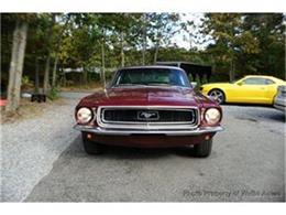 1968 Ford Mustang (CC-1102604) for sale in Miami, Florida