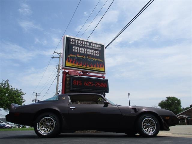 1981 Pontiac Firebird Trans Am (CC-1103843) for sale in Sterling, Illinois