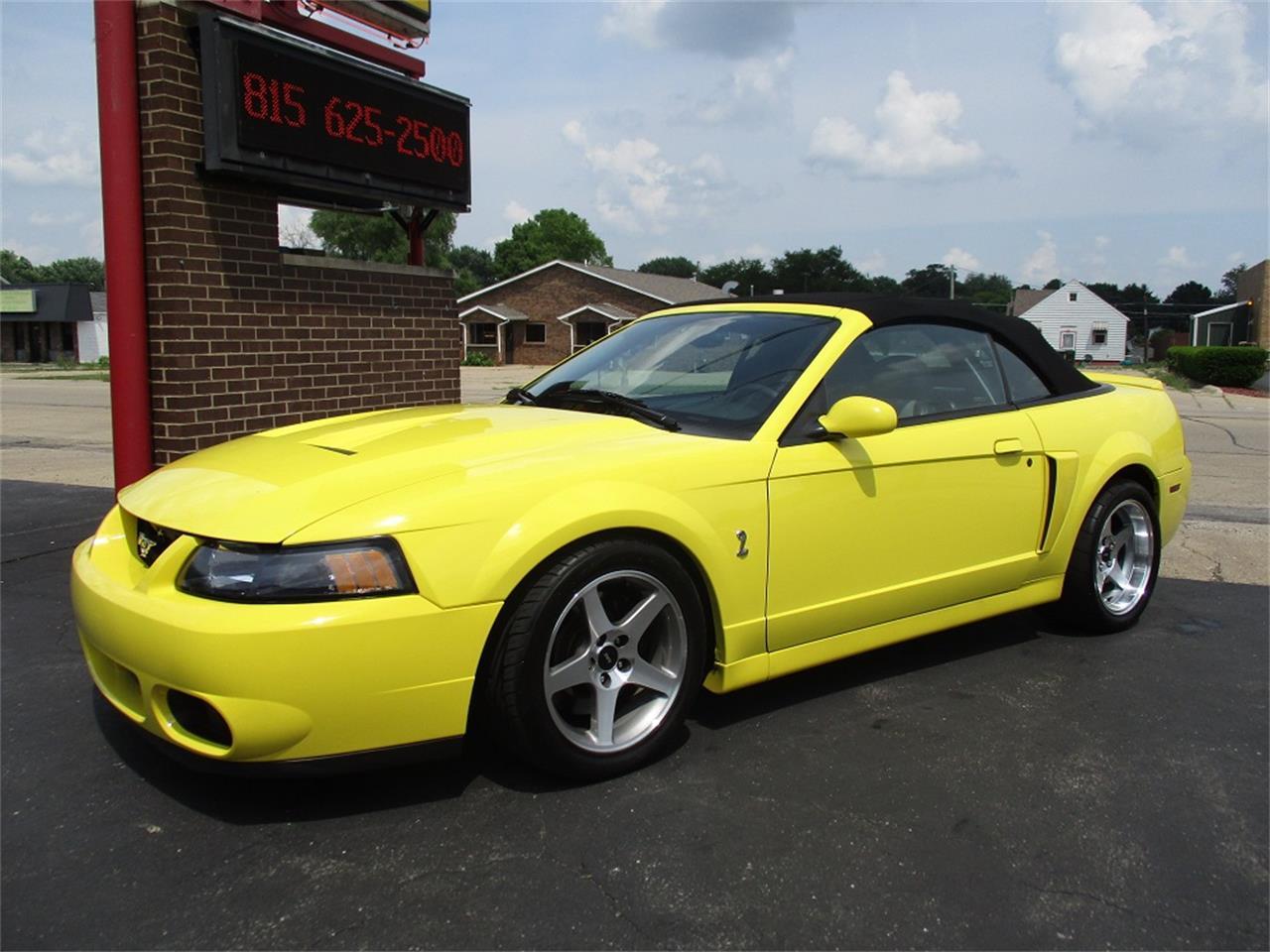 2003 Ford Mustang SVT Cobra for Sale   ClassicCars.com   CC-1104113
