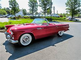 1955 Ford Thunderbird (CC-1108578) for sale in Worcester, Massachusetts