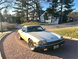 1988 Jaguar XJS (CC-1113923) for sale in Burr Ridge, Illinois