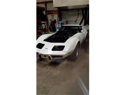 1979 Chevrolet Corvette (CC-1115021) for sale in Cadillac, Michigan