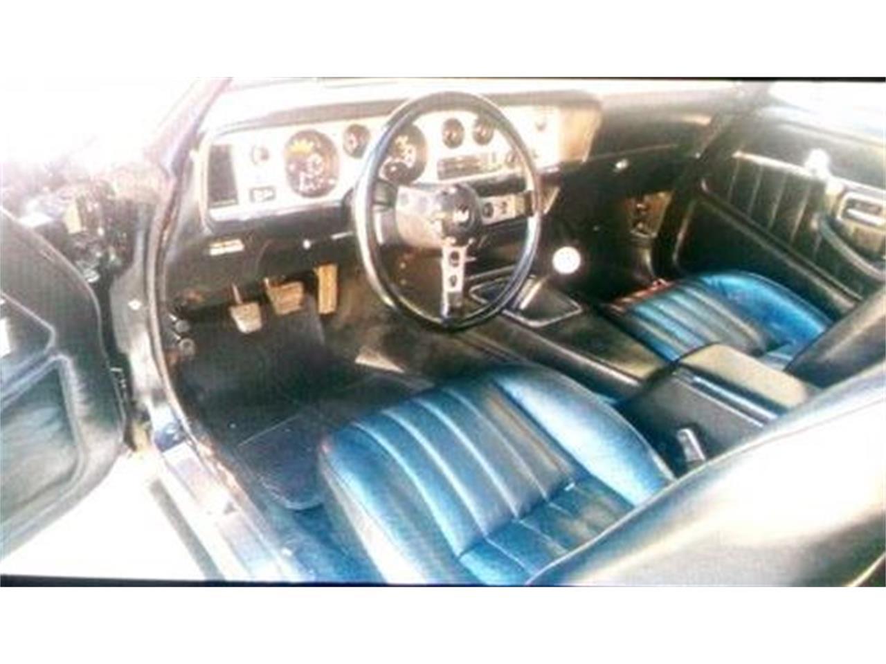 1979 Pontiac Firebird Trans Am (CC-1115903) for sale in Cadillac, Michigan
