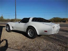 1981 Chevrolet Corvette (CC-1116170) for sale in Cadillac, Michigan