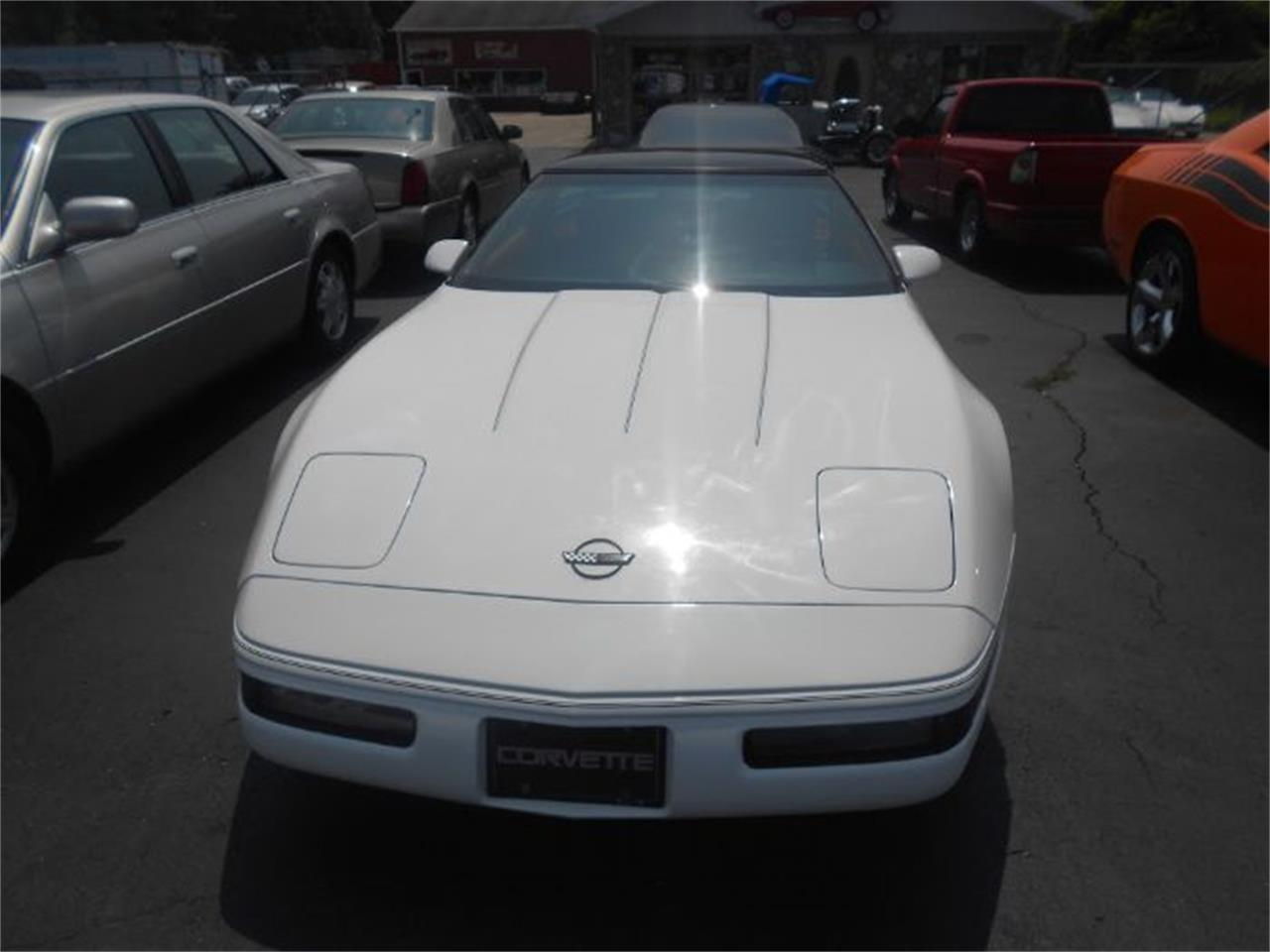 1992 Chevrolet Corvette (CC-1116704) for sale in Cadillac, Michigan