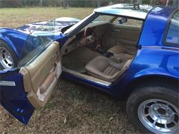 1981 Chevrolet Corvette (CC-1116709) for sale in Cadillac, Michigan