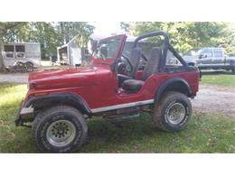 1979 Jeep CJ5 (CC-1116930) for sale in Cadillac, Michigan