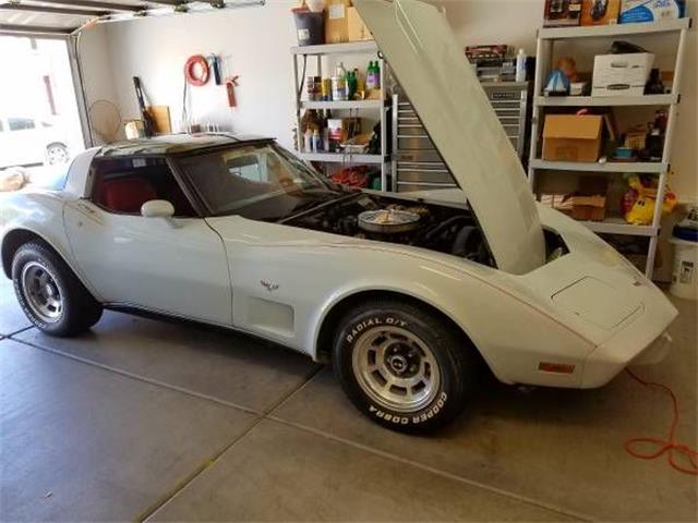 1979 Chevrolet Corvette (CC-1117026) for sale in Cadillac, Michigan