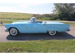 1957 Ford Thunderbird (CC-1117092) for sale in Cadillac, Michigan