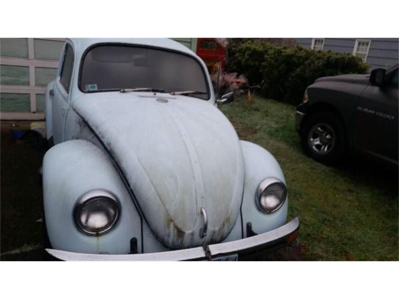 1971 Volkswagen Beetle (CC-1117900) for sale in Cadillac, Michigan