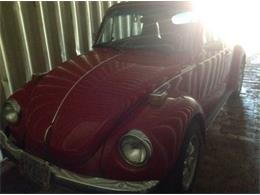 1973 Volkswagen Beetle (CC-1118091) for sale in Cadillac, Michigan
