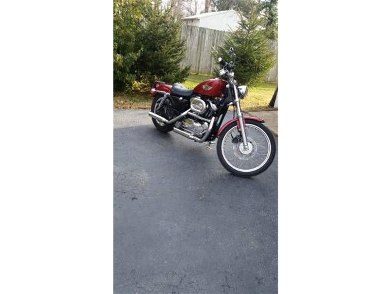 2003 Harley-Davidson Sportster (CC-1118461) for sale in Cadillac, Michigan
