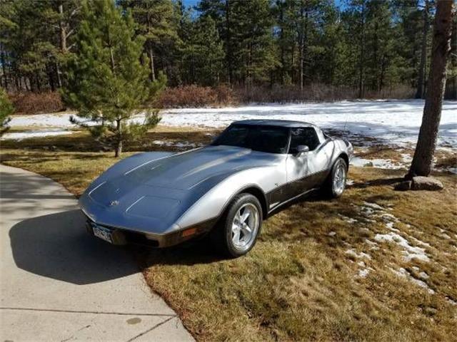 1978 Chevrolet Corvette (CC-1118528) for sale in Cadillac, Michigan