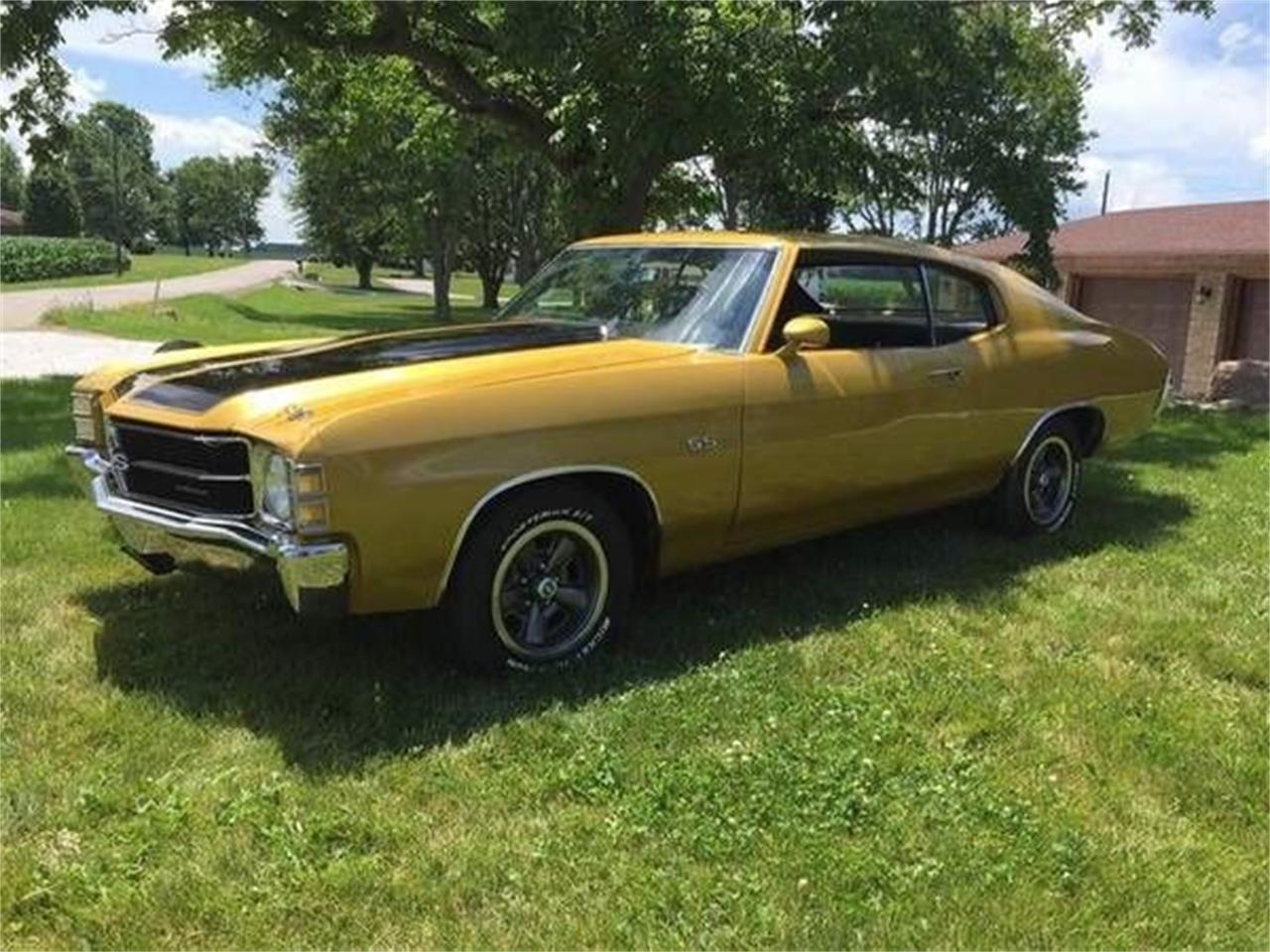 1971 Chevrolet Chevelle (CC-1118856) for sale in Cadillac, Michigan