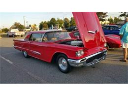 1959 Ford Thunderbird (CC-1119088) for sale in Cadillac, Michigan