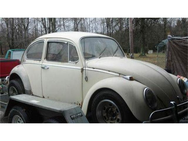 1966 Volkswagen Beetle (CC-1119117) for sale in Cadillac, Michigan