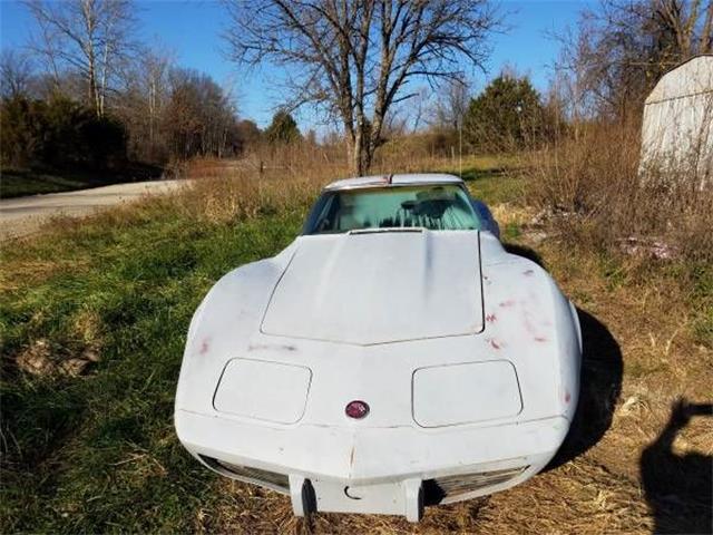 1976 Chevrolet Corvette (CC-1119268) for sale in Cadillac, Michigan