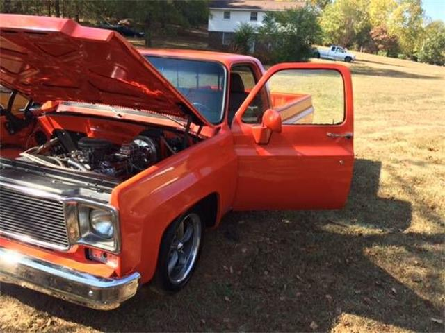 1975 Chevrolet C10 (CC-1119350) for sale in Cadillac, Michigan