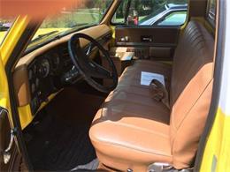 1974 Chevrolet C10 (CC-1119365) for sale in Cadillac, Michigan