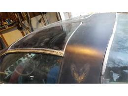 1980 Pontiac Firebird Trans Am (CC-1119372) for sale in Cadillac, Michigan