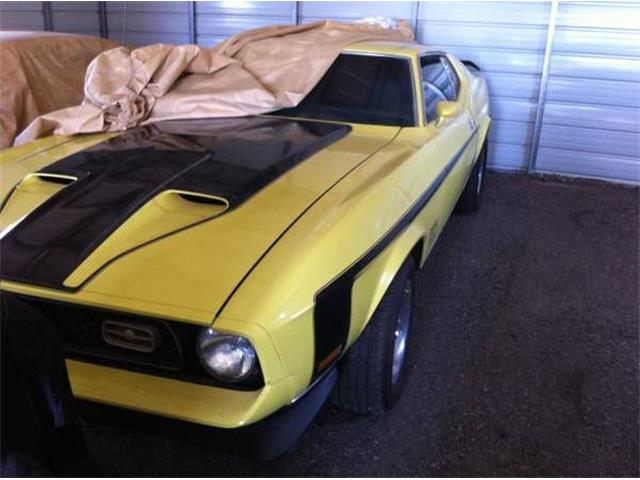 1971 Ford Mustang (CC-1119519) for sale in Cadillac, Michigan