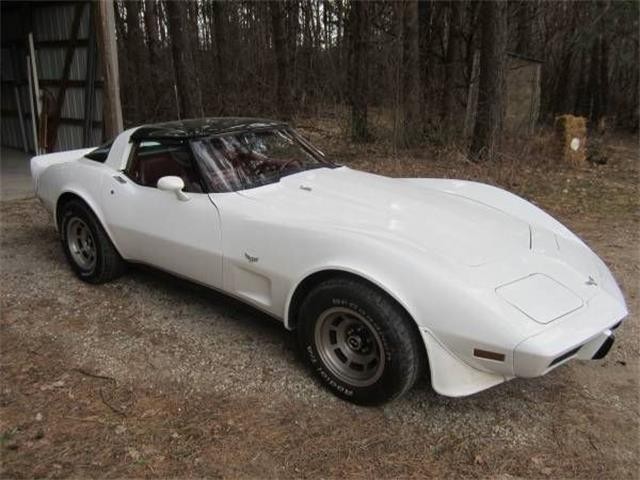 1979 Chevrolet Corvette (CC-1119593) for sale in Cadillac, Michigan
