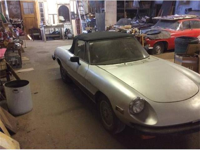 1979 Alfa Romeo Spider (CC-1119613) for sale in Cadillac, Michigan