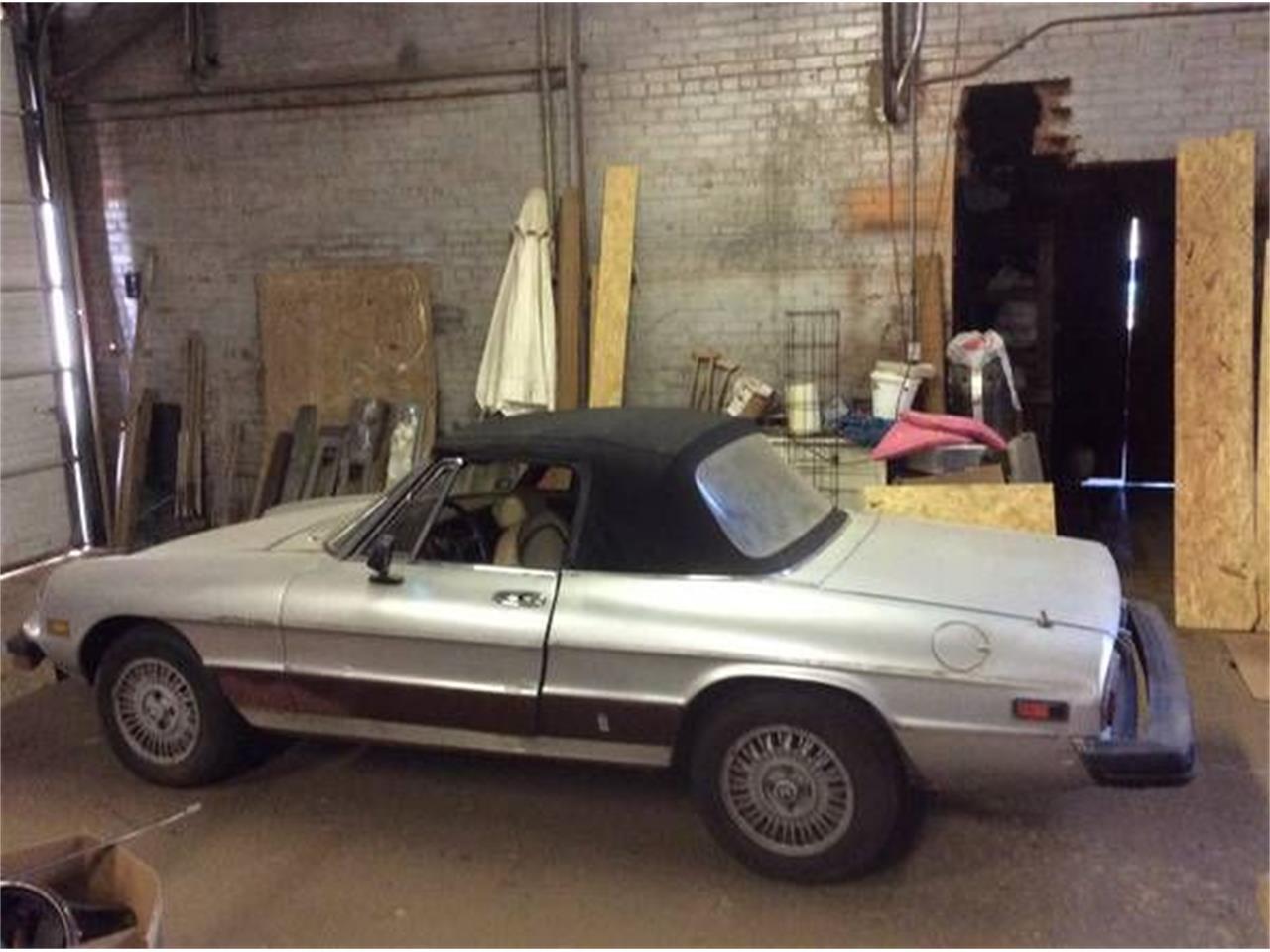1979 Alfa Romeo Spider (CC-1119613) for sale in Cadillac, Michigan