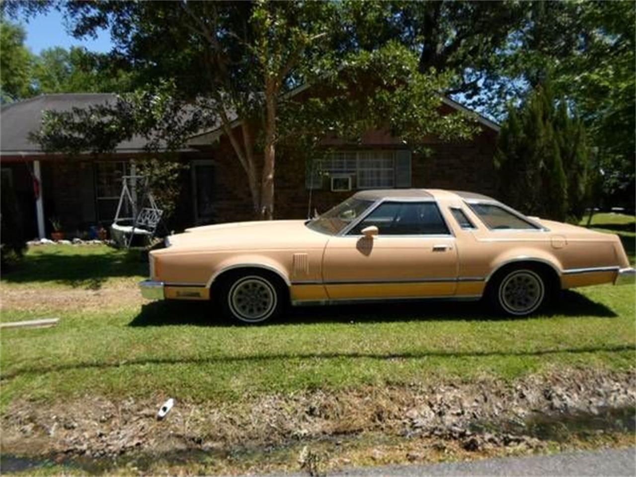 1978 Ford Thunderbird (CC-1119805) for sale in Cadillac, Michigan