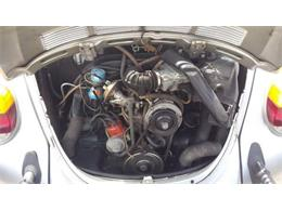 1979 Volkswagen Beetle (CC-1119860) for sale in Cadillac, Michigan