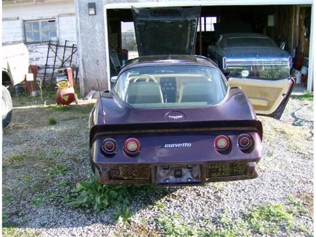 1979 Chevrolet Corvette (CC-1119926) for sale in Cadillac, Michigan