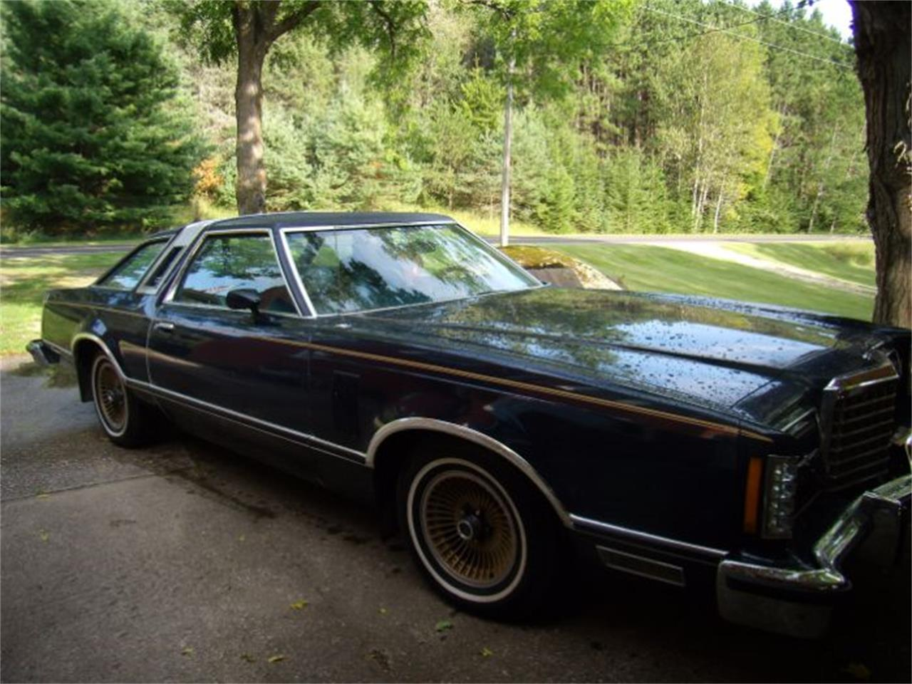 1978 Ford Thunderbird (CC-1121075) for sale in Cadillac, Michigan
