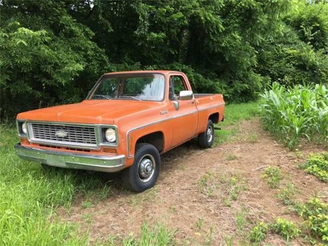 1973 Chevrolet C/K 1500 (CC-1121202) for sale in Cadillac, Michigan