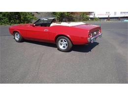1973 Ford Mustang (CC-1121383) for sale in Cadillac, Michigan