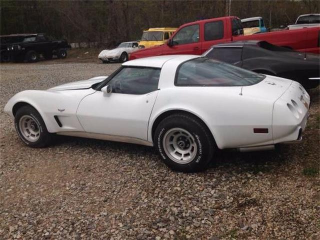 1979 Chevrolet Corvette (CC-1121633) for sale in Cadillac, Michigan