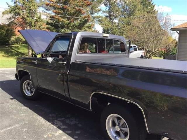 1977 Chevrolet C10 (CC-1121736) for sale in Cadillac, Michigan