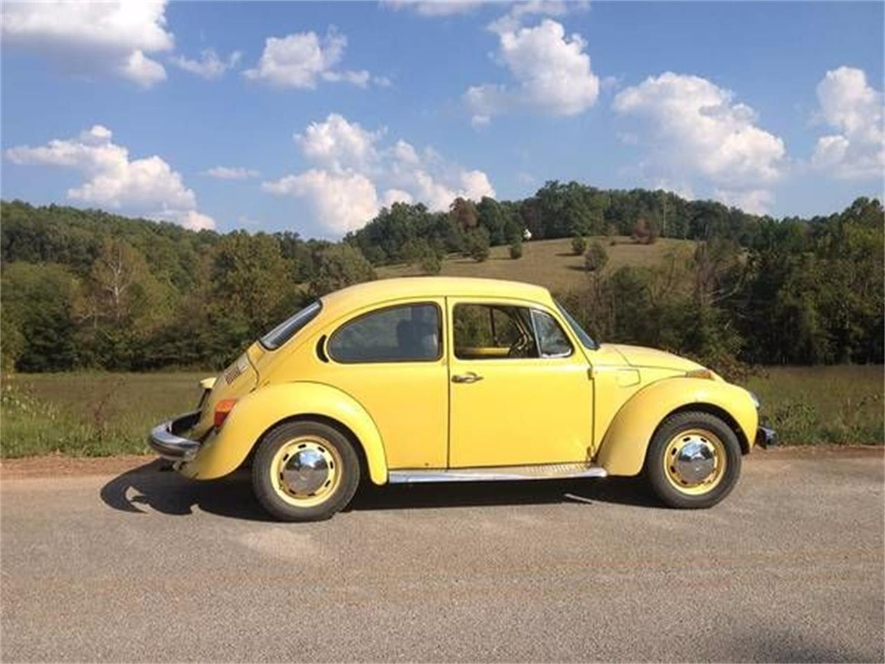 1974 Volkswagen Super Beetle (CC-1121772) for sale in Cadillac, Michigan