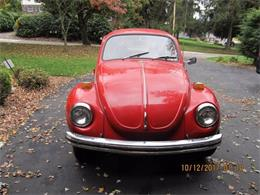 1972 Volkswagen Super Beetle (CC-1121865) for sale in Cadillac, Michigan